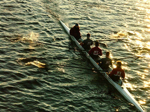 MIT Rowing Team Practicing on the Charles