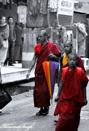 Colorful Monks