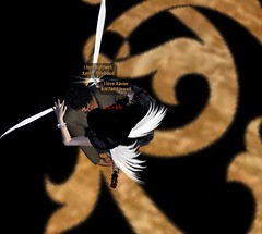 SECOND LIFE WINGS