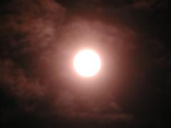 sun 020