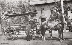vehicle, pack animal, coachman, history, monochrome photography, horse harness, horse and buggy, carriage, black-and-white,