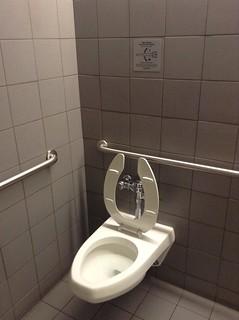 Dual flushing toilet