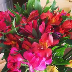 lily(1.0), shrub(1.0), flower arranging(1.0), cut flowers(1.0), flower(1.0), floral design(1.0), plant(1.0), flora(1.0), flower bouquet(1.0), floristry(1.0), peruvian lily(1.0), petal(1.0),