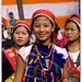 Patkai Dehing Festival