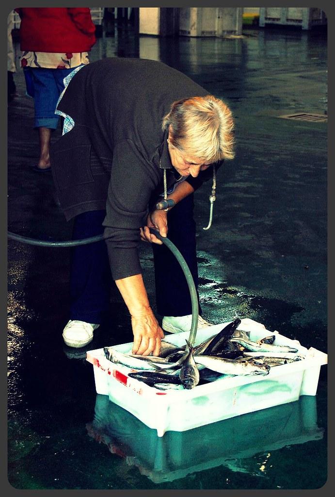 Flickr photos tagged pescadera picssr for Hagen s fish market