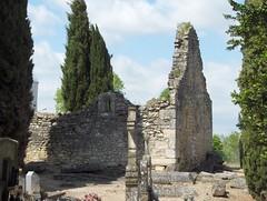 Eglise romane et cimetière mérovingien de Civaux (Vienne), 29 avril 2006