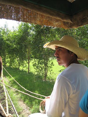 Transport in the Hacienda