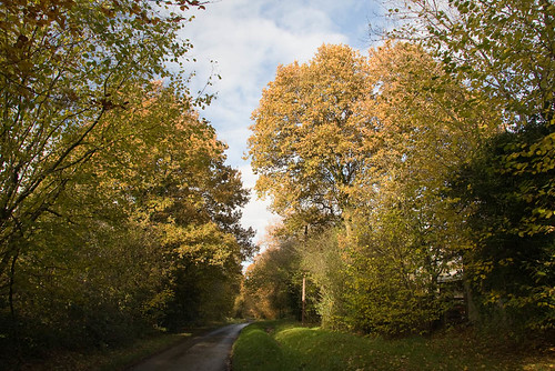 Fernden Lane