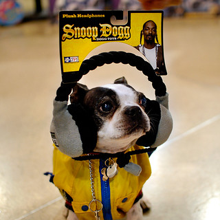 Snoop Dogg Dogg Toys?!!!