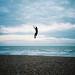 extreme kite flying by lomokev