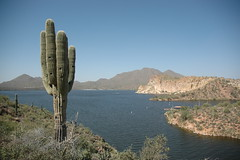 2008 Saguaro Lake