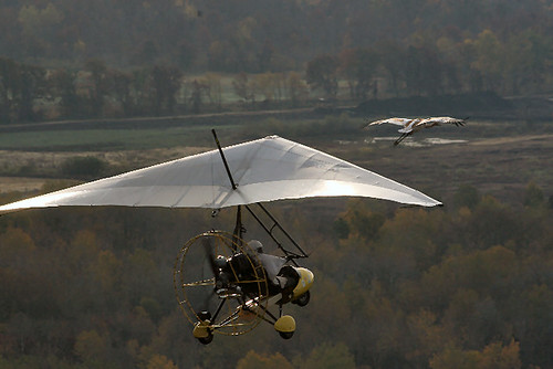 Ultralight in Flight
