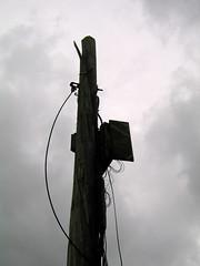 Linden Place - Severed Utility Pole Detail