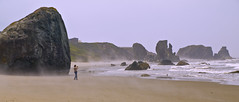 Pacific Coast 2008