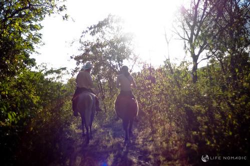 horses cowboy roadtrip todd boquete panama 40mm nokton 4014 horsebackriding tynan rd1s didimo lifenomadic
