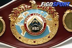 WBO-Präsident gegen neues Punktesystem