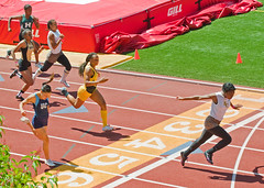 sprint, athletics, track and field athletics, championship, sports, running, 800 metres, heptathlon, person, athlete,