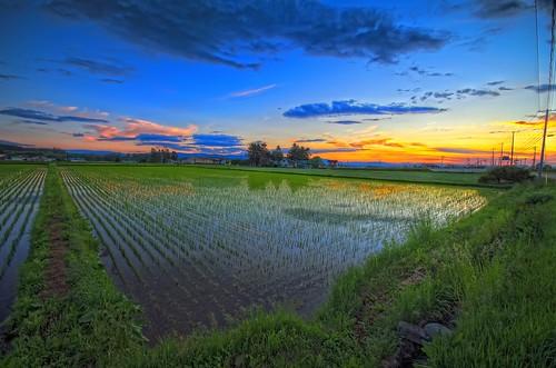 Sunset in Hokkaido