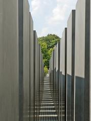 Les stèles du Mémorial aux juifs assassinés d'Europe (Berlin)