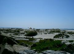 Trip to San Diego 10/2008