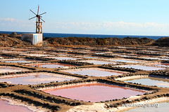 outdoor structure(0.0), wind(0.0), aerial photography(0.0), tower(0.0), salt evaporation pond(1.0), landscape(1.0),
