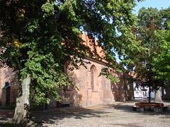 2008 09-05 Toender, DK 053
