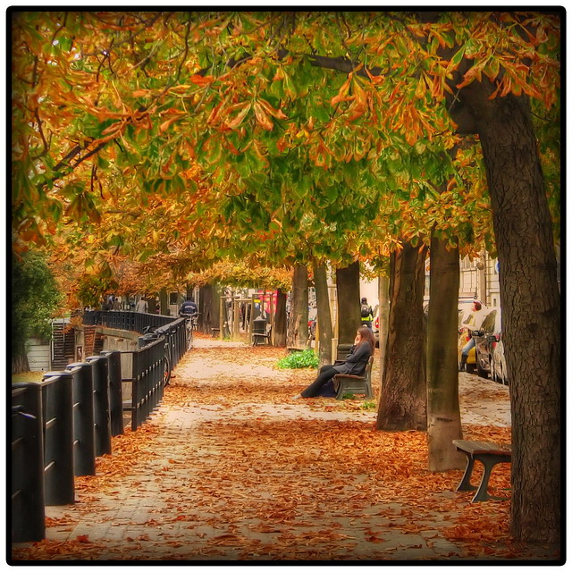 Fall sidewalk by the river