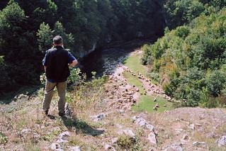Dabar - Bosnia - 2005