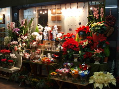 A flower shop in Christmas