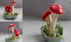 red, plant, miniature, produce,
