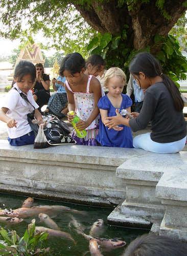 Feeding the fish at the Royal Palace