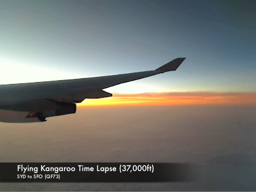 Flying Kangaroo Time Lapse (#137)