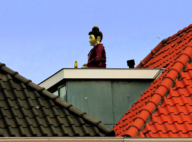 Buddha on a hot tin roof