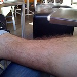 My hairy calf