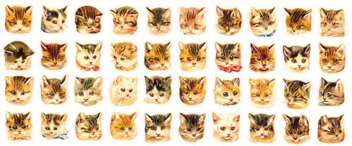 favorite stickers