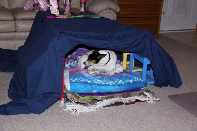 sick n tent (4)