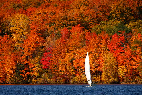Autumn Sailboat | by Martin Cathrae