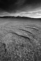 Ripples on the Playa, Black Rock Desert, Nevada