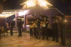 Mariachi Band at Cunucu Terrace