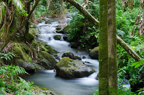 longexposure green water river hawaii nikon rocks forrest jungle bigisland rainforrest ndfilter 1685 silkywater d7000 nikon1685 nikond7000 andreaskoeberl