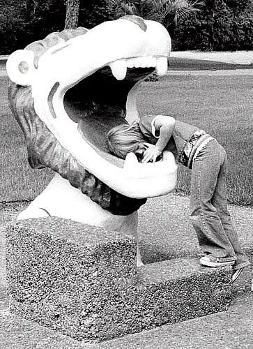 Houston Zoo Lion Head Fountain