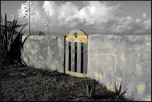 sunrise fence gate gimp jamaica treasurebeach beforethebatterydied httpwwwcalabashfestivalorg2008shinfohtm charlenecollinsjamaicagmailcom charlenecollins