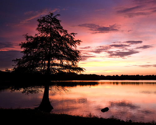 sunset sky sun lake color tree 20d nature water canon duck explore cypress kingwood lakehouston atascocita treesubject caseymorris