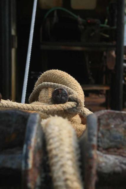 Tie Down  - Christopher D. LeClaire photo, 2008