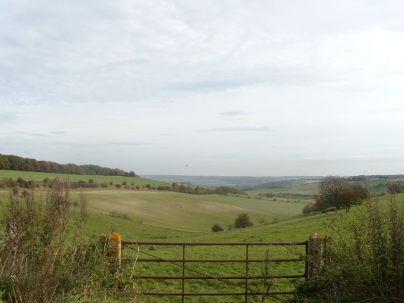 view past the gate Goring circular