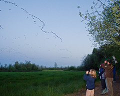 Kids enjoy birdwatching at Ankeny NWR