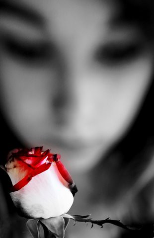 A rose, a girl and a dark place...