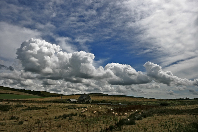Cumulus Cloud farming on the Isle of Wight