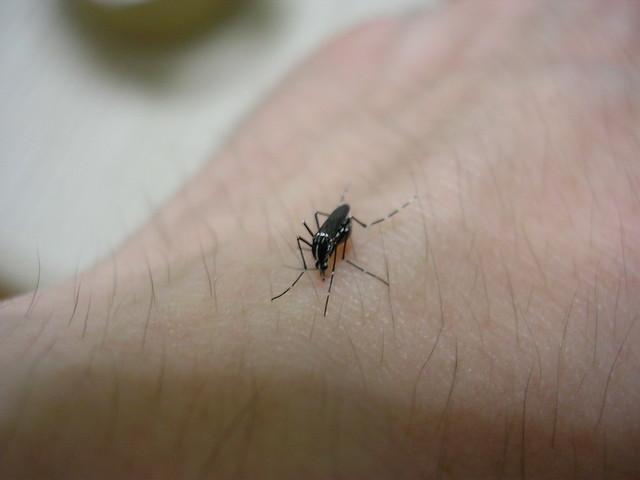 Sucking on my hand! (5)