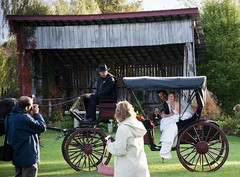 cart(0.0), vehicle(1.0), horse and buggy(1.0), carriage(1.0),